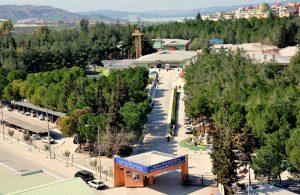 Adana Dr. Ekrem Tok Ruh Sağlığı Ve Hastalıkları Hastanesi Randevu Al